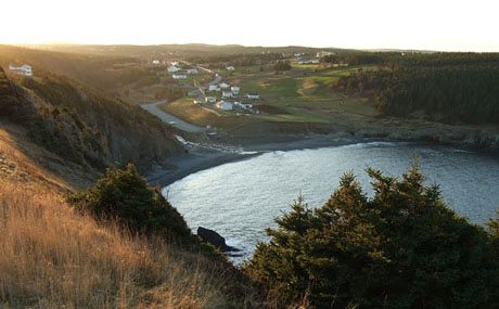 Middle Cove