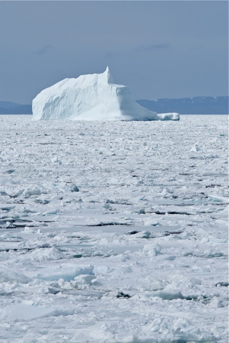 Iceberg and sea ice - Cavendish