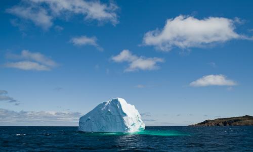 Iceberg - Witless Bay