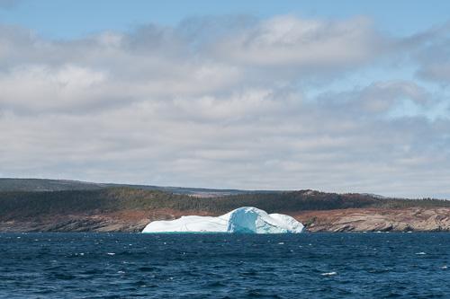 Iceberg from afar - Bay Bulls