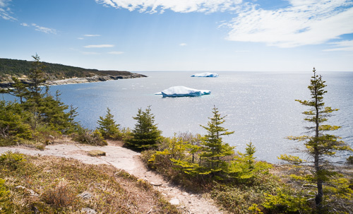 Icebergs in Useless Bay - Spout Path