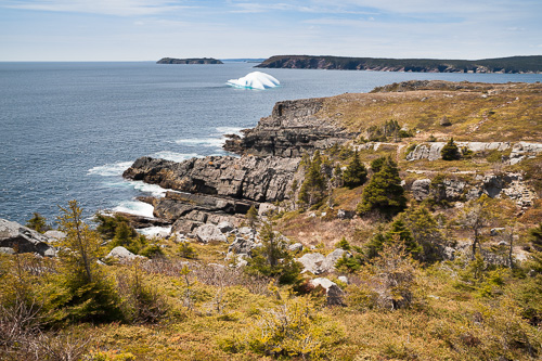 Iceberg & Gull Island - Spout Path