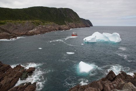 Iceberg and bergy bit - Logy Bay