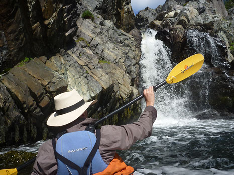 Little Paddling Engine at waterfall - Cape Broyle