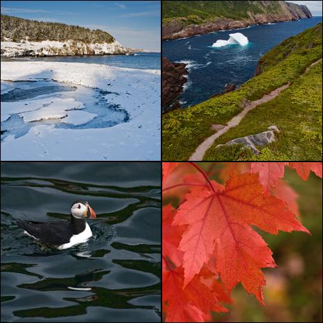 Seasons of 2009 - Newfoundland