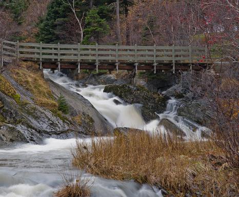 Waterfall in Bowring Park - St. John's