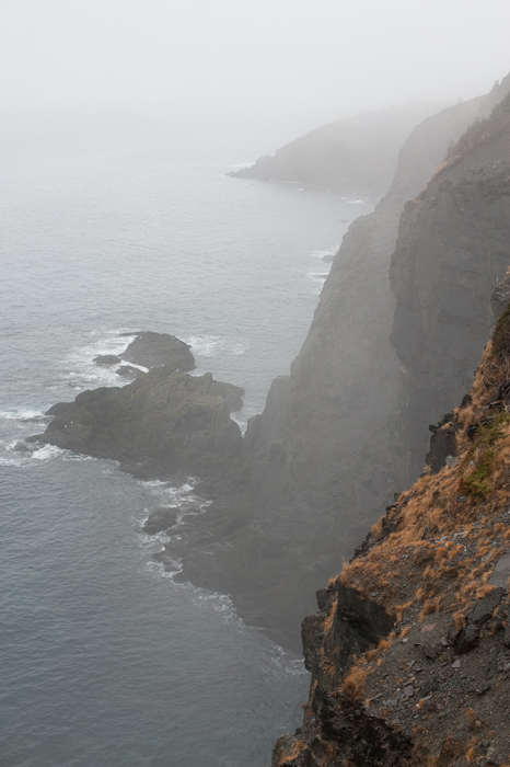 Newfoundland cliffs in the mist
