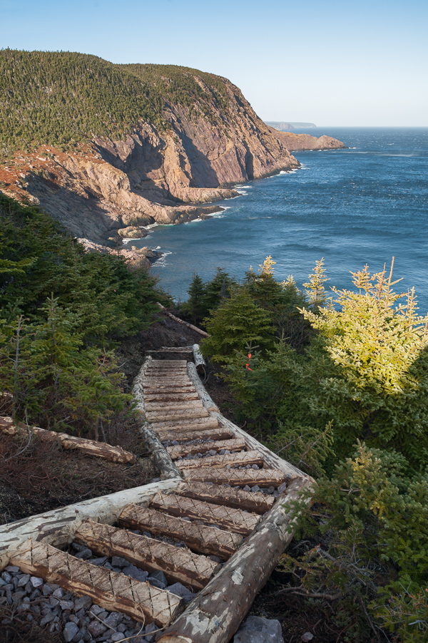 New Stairs On The East Coast Trail U2013 Cobbler Path