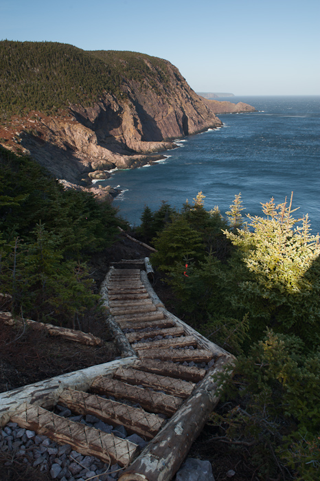 New stairs on the East Coast Trail - near Torbay