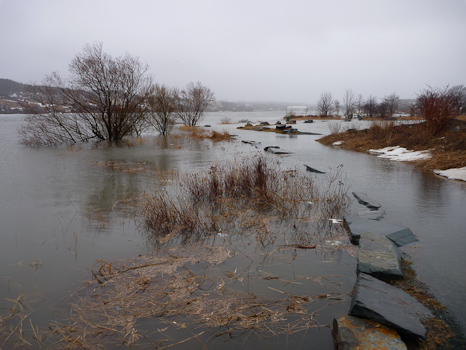 Quidi Vidi Lake Trail flooded - Quidi Vidi