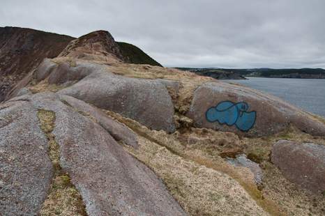 Graffiti on the East Coast Trail - Torbay Point