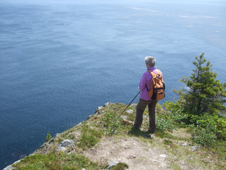 Mom looking for whales - Father Troy's Trail