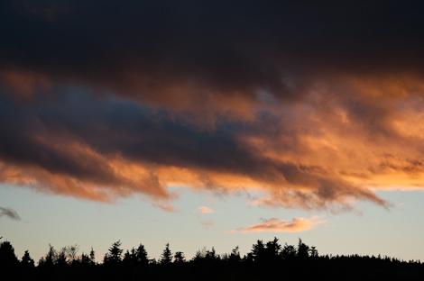 Backyard sunset - Torbay