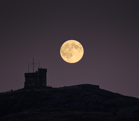 Hunter's Moon rising over Signal Hill - St. John's