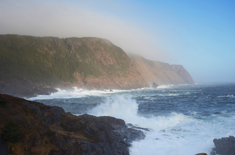 December 2, 2010 - Logy Bay