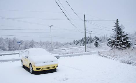 White driveway - Torbay
