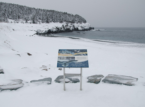 Wintery beach - Middle Cove