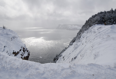 Wintery Logy Bay - Cobbler Path