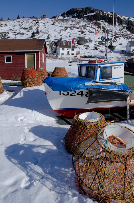 Snow crab traps and a boat - Petty Harbour