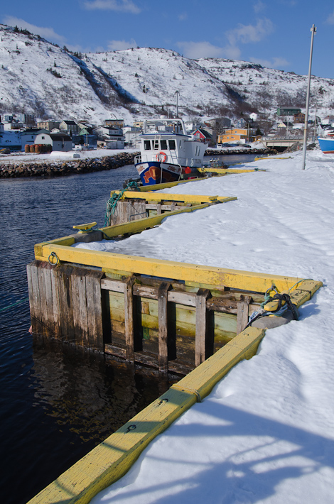The dock - Petty Harbour