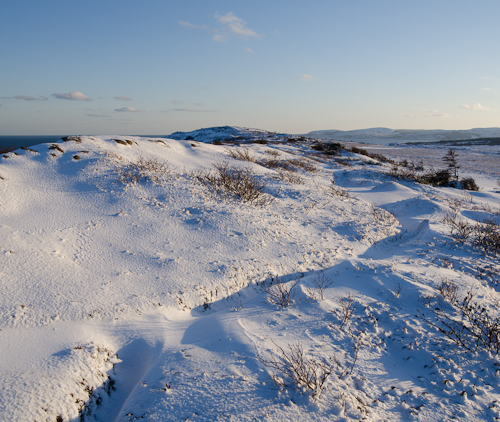 A little winter on the trail - Cape Spear Path