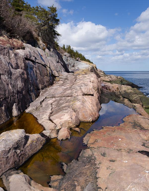 Alternate path along the cliffs - Deadmans Bay Path