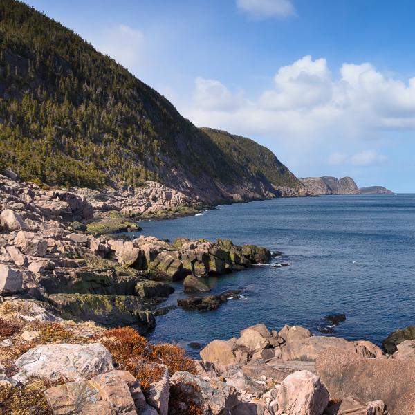 Beautiful Gunners Cove - Deadmans Bay Path
