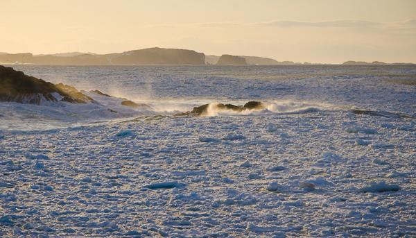 Sea ice - Salt Harbour