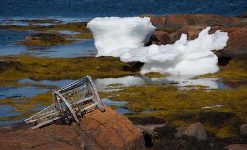 Broken lobster pot - Shoal Bay