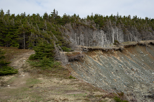 Erosion damage - Silver Mine Head Path
