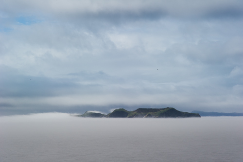 Great Island emerging from the fog - Witless Bay Ecological Reserve