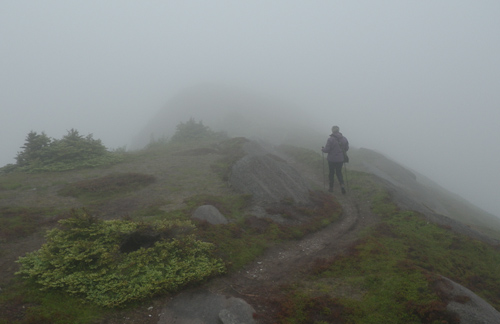 Mom walks into the fog on Torbay Point - Cobbler Path
