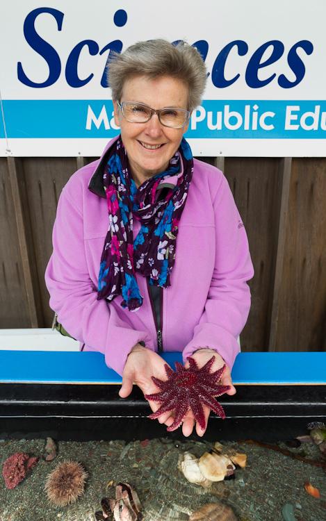 Mom meets the sunstar, again - Ocean Sciences Centre, Logy Bay