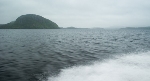 Flying over the water - Newman Sound, Terra Nova NP