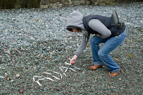 A crazy girl spells out ADAM with capelin - Middle Cove