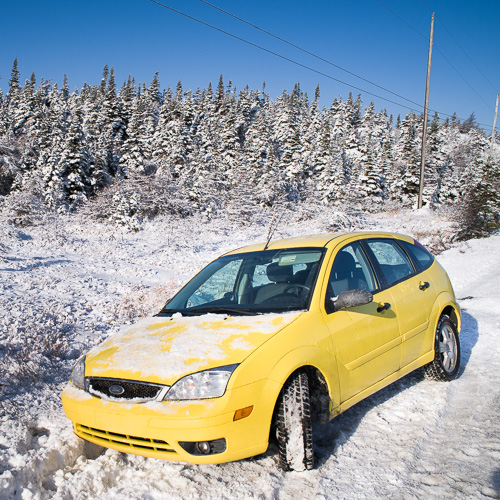 January 2009 - Cape Spear Drive