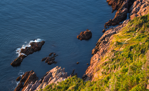 View from the Logy Bay viewpoint - Cobbler Path