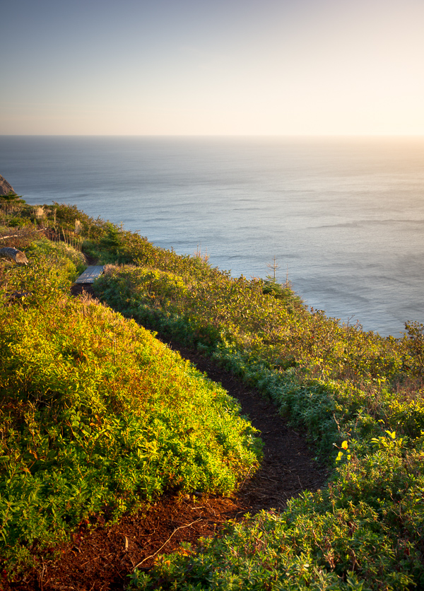 East Coast Trail at first light - Cobbler Path
