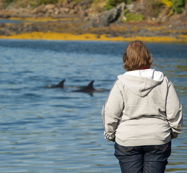 Marije watches the dolphins - New World Island