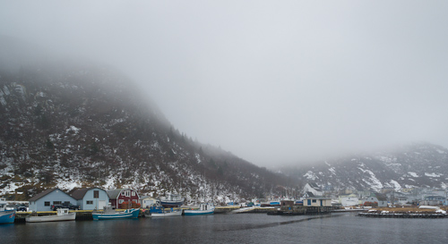 Foggy winter scenery - Petty Harbour