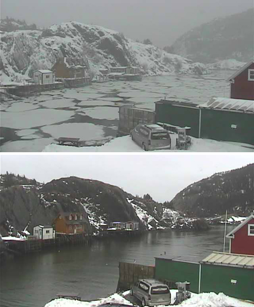 From Wow! to What!? in 15mm - Quidi Vidi HarbourCam