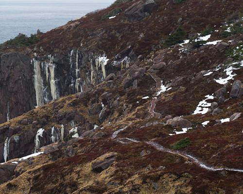 Winter trail - Cobbler Path
