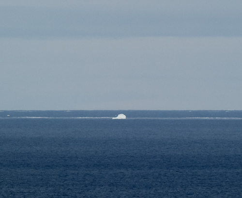 My first iceberg of 2012 - Biscan Cove Path