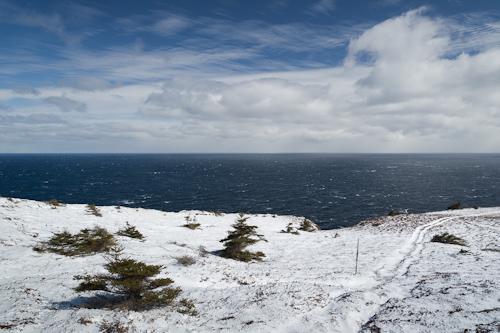 Black Head in white snow - Stiles Cove Path