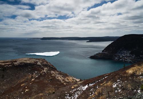 Iceberg outside the Narrows - St. John's