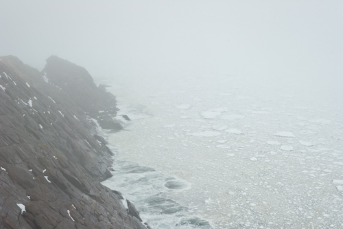 Sea ice in the fog - Cobbler Path