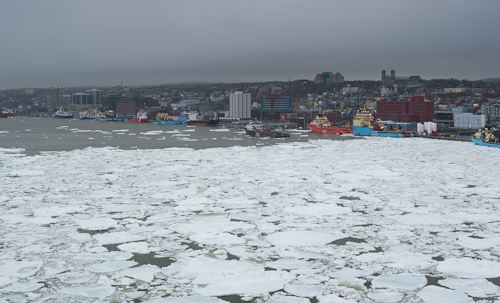 Ice in the harbour - St. John's