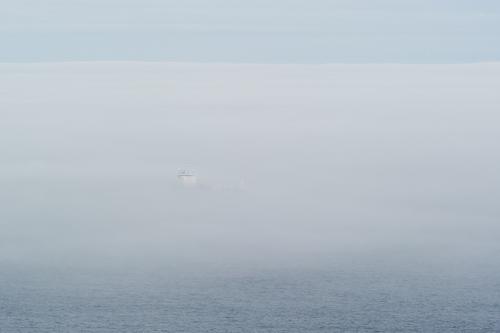 Ship emerging from the fog - St. John's