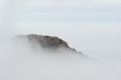 Cuckold Head in the fog - Cuckolds Cove Trail