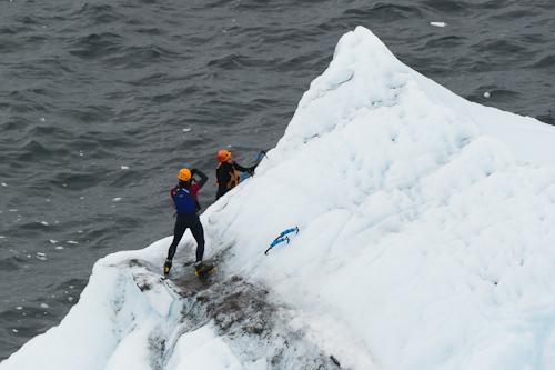 Iceberg climbers - Quidi Vidi